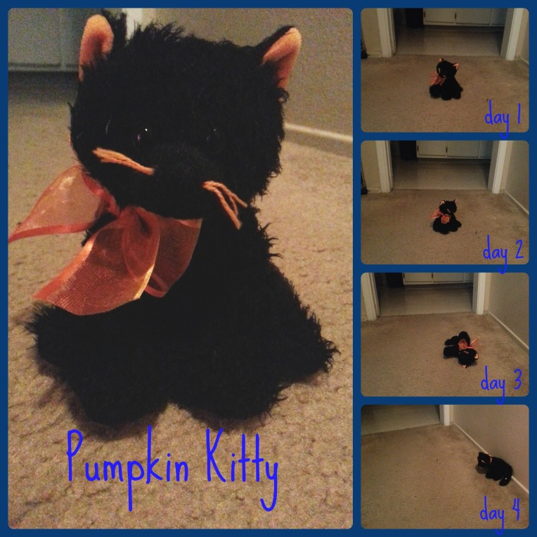 pumpkinkittyCollage
